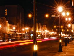 Street Lamps Light Pollution Is Linked To Insect Loss